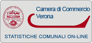 Camera commercio online